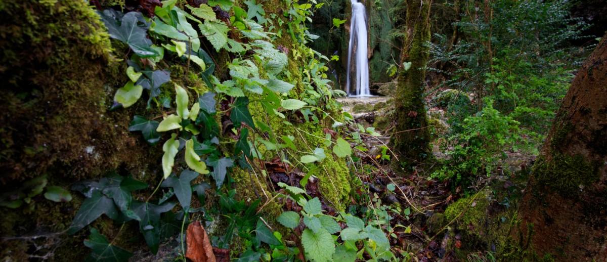 2I6A6166-cascade roquefort les cascades-cdf