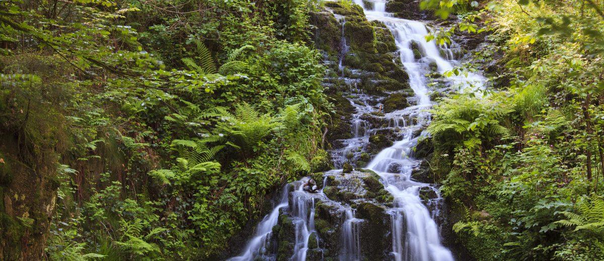 Cascade de Faymont - Vosges