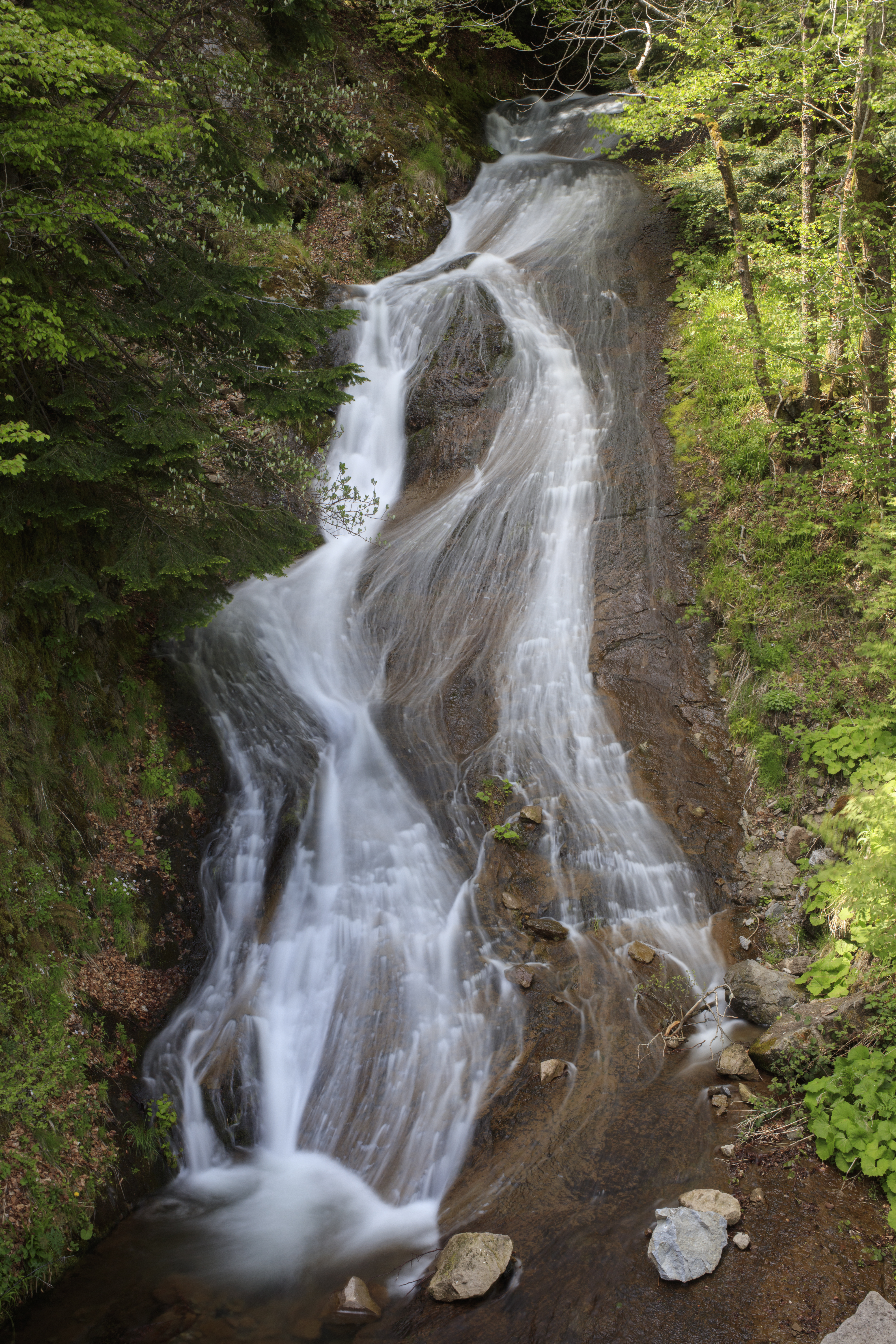 2I6A9452-cascade-de-pierre-taillade-laveissiere-cantal.