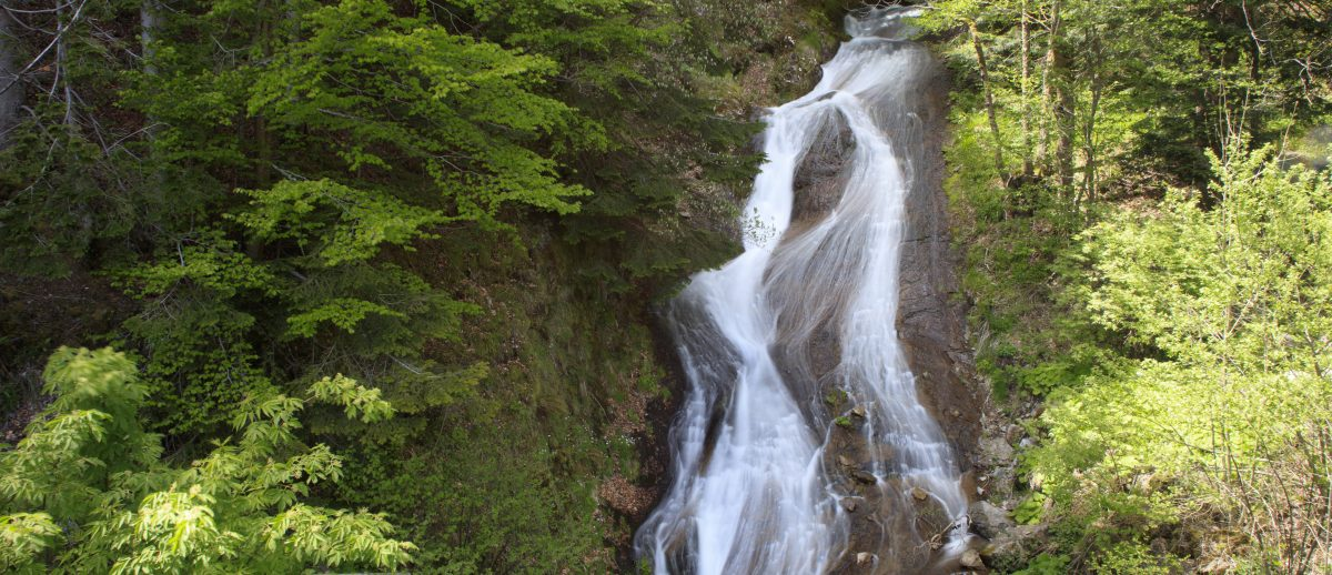 2I6A9455-cascade-de-pierre-taillade-laveissiere-cantal